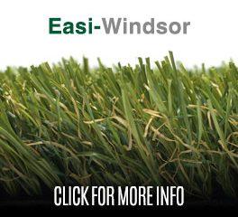 EASI-WINDSOR – BY EASIGRASS™
